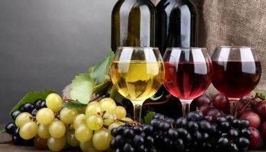 С чем пить вино