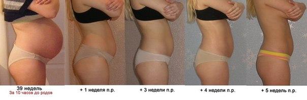 все методы похудения